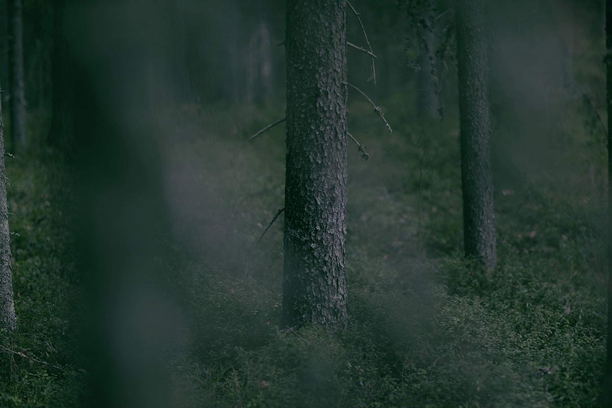 Kuva: Malena Haglund